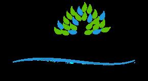 Shepherd of the Desert Preschool Logo